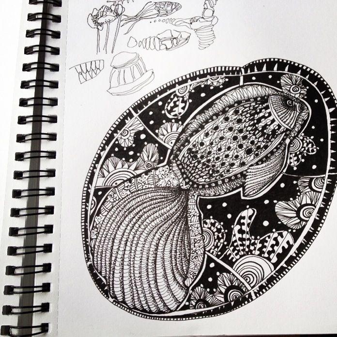 Fish Study - aRDart