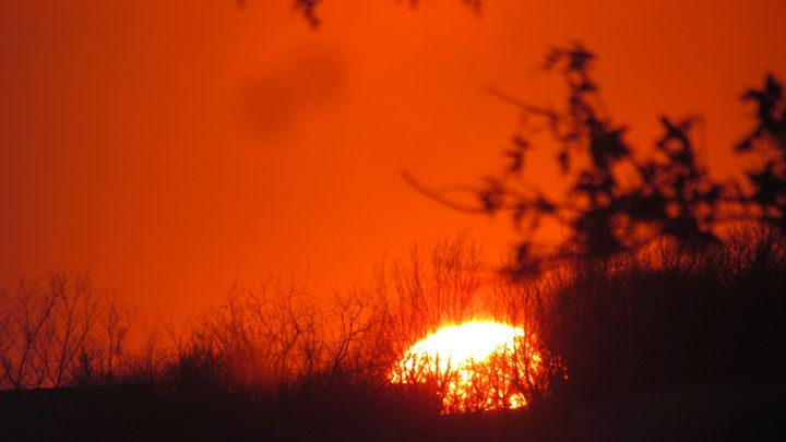 Sunset on Fire - Kali's Moments