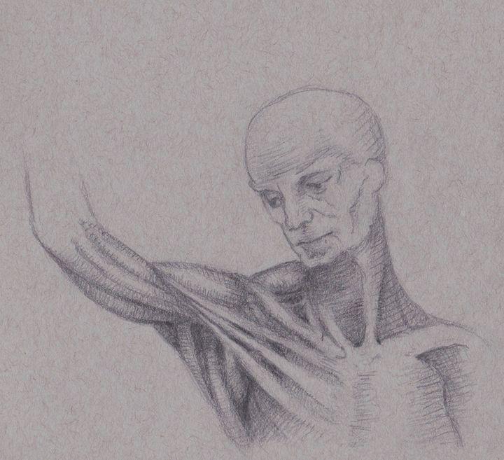 da Vinci Study - jeranfisher.com