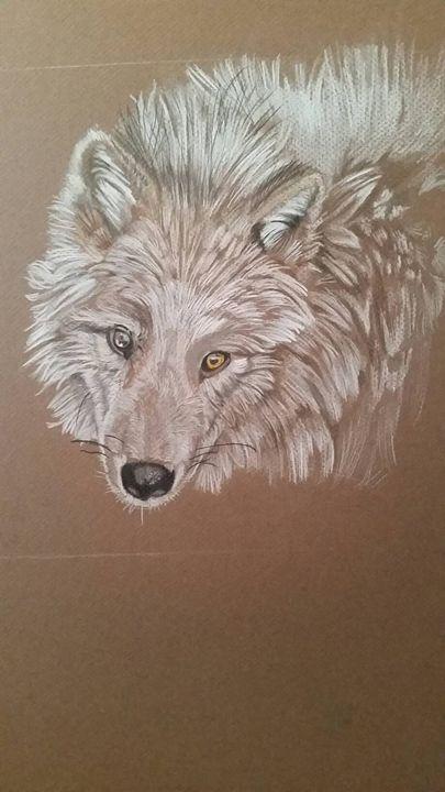 Wolf - Art by stephanie