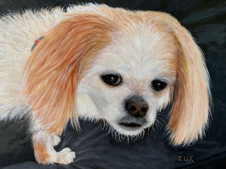 Dog With Soulful Eyes - Art by Karen Zuk Rosenblatt