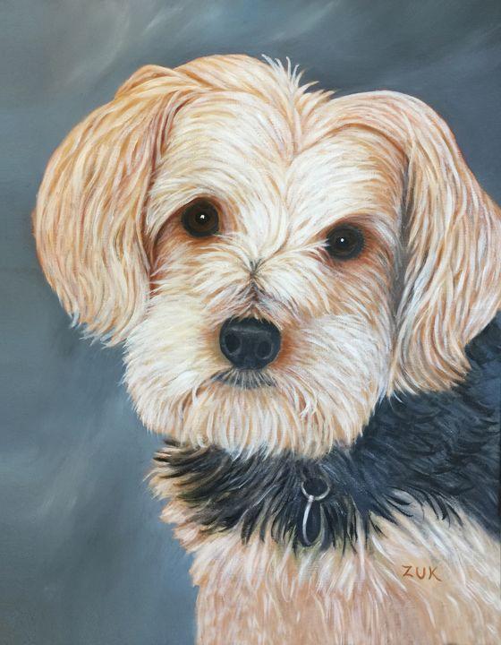 Yorkie Portrait - Art by Karen Zuk Rosenblatt
