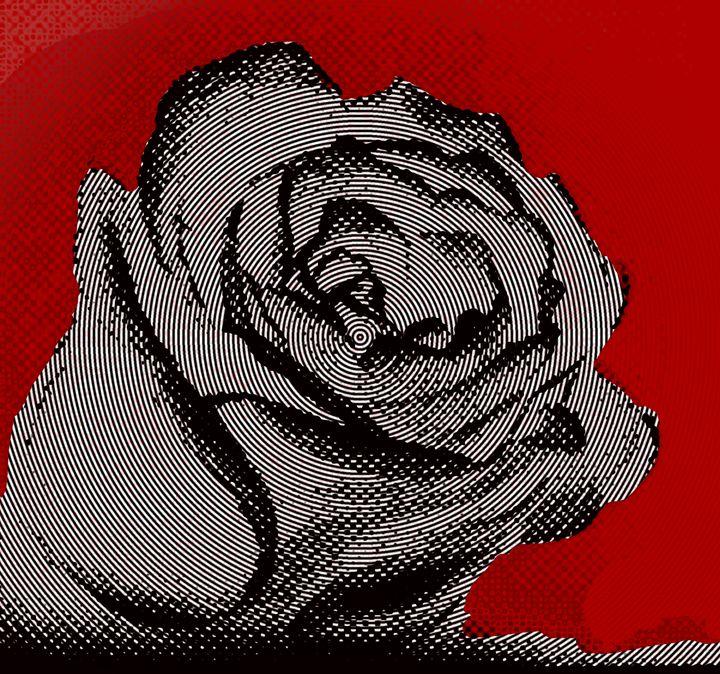 Pop Art Rose - Matt Skinner Art