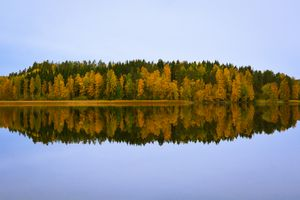 Fall foliage in Finland