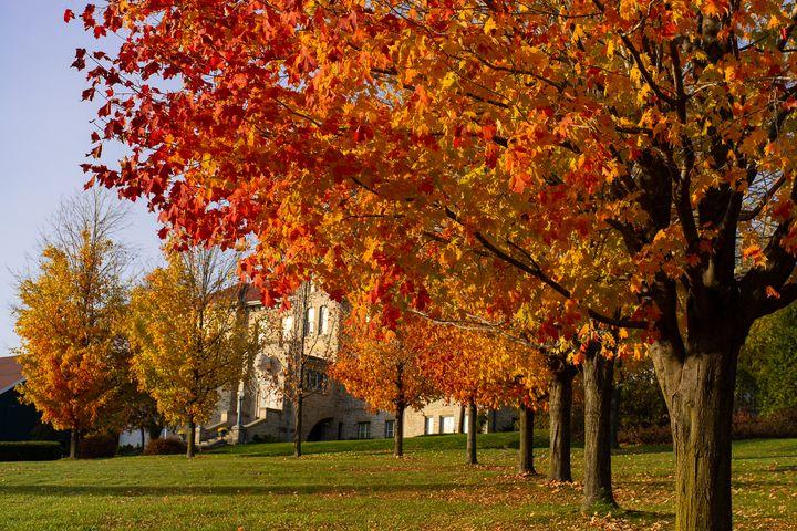 Fergus Museum in Autumn - Su Buehler Photography