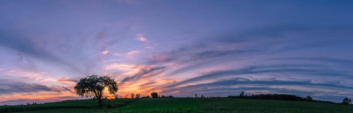 Blue skies - Su Buehler Photography