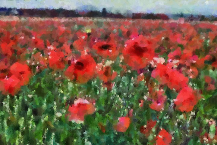 """ Field Poppies "" - ( Joe Digital & Co ) art.likesyou.org"