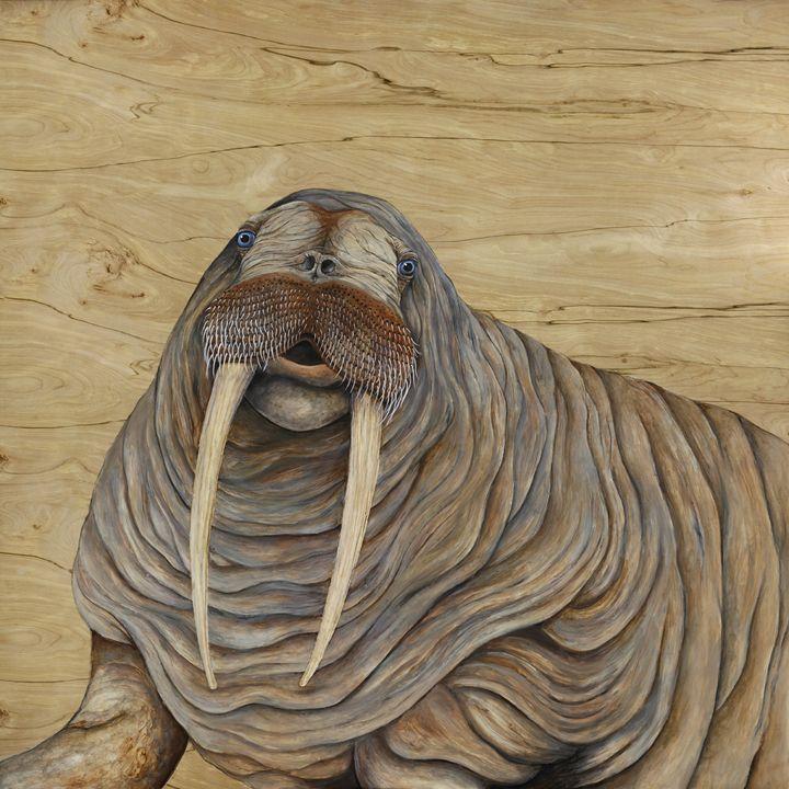 Walrus - Skee Goedhart Fine Art
