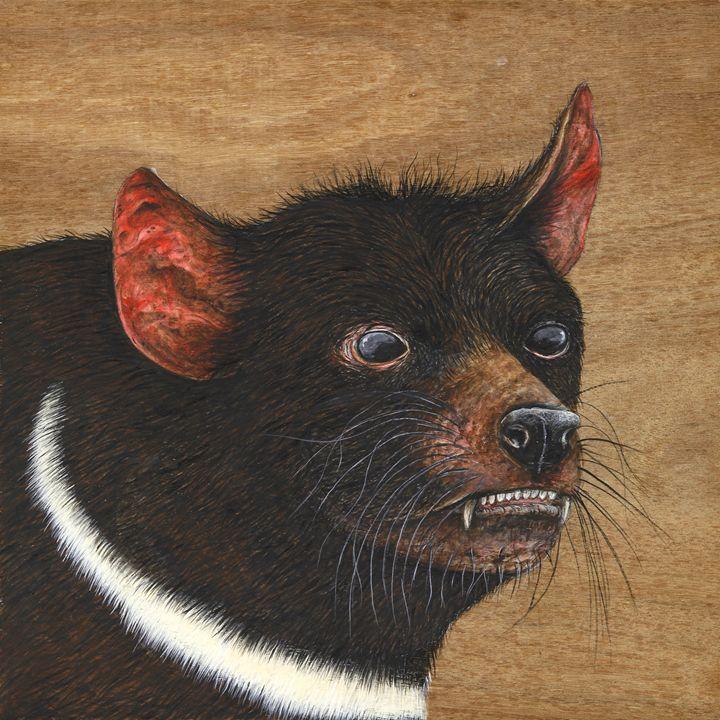 Tasmanian Devil - Skee Goedhart Fine Art