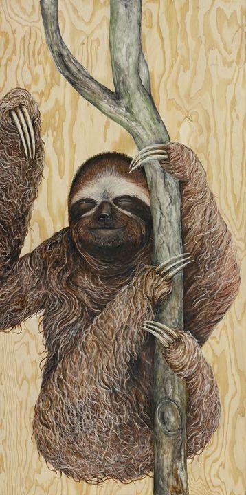 Three-toed Sloth - Skee Goedhart Fine Art