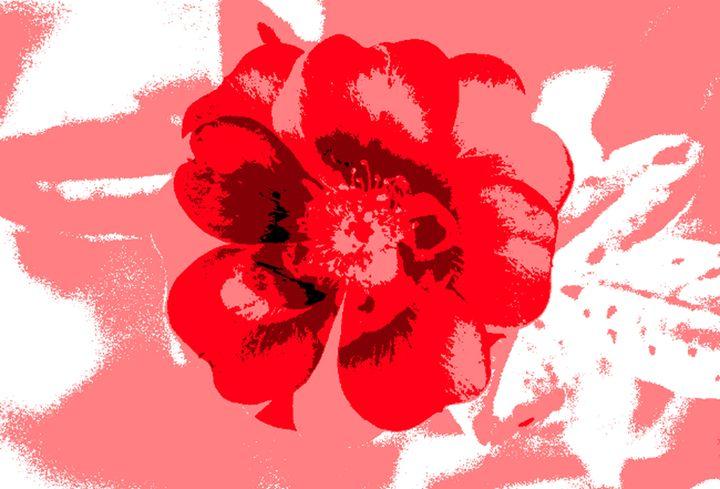 British Flower - Blaine Chitwood