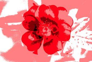 British Flower