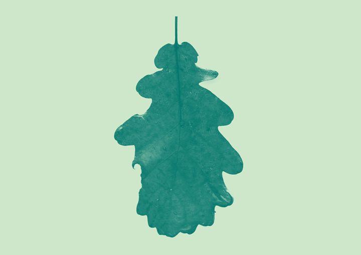The simple leaf - Pastel Leaf