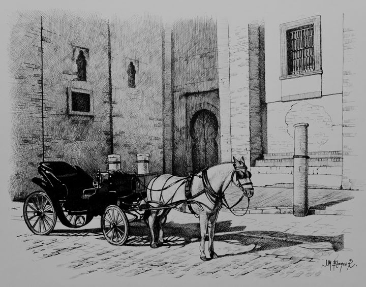 Carriage waiting for tourists - Jose Miguel Blanco