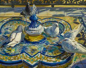 Bathing doves in Seville