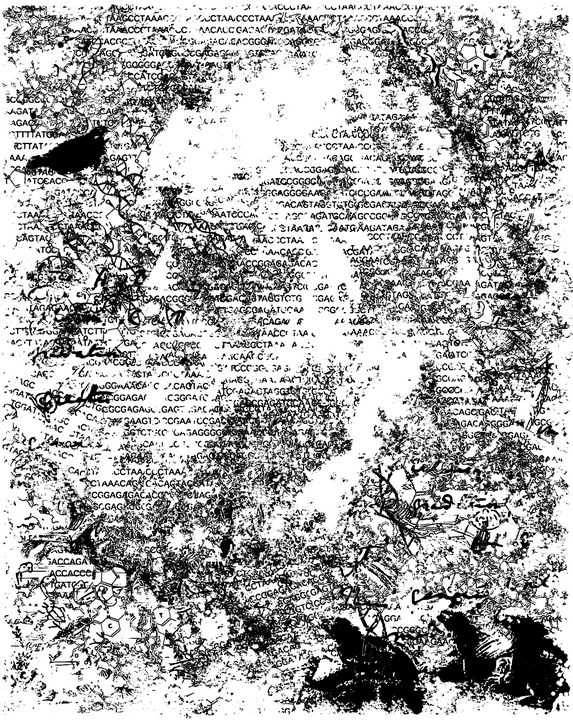 Darwin's thought illustration - HIROSHI UEDA