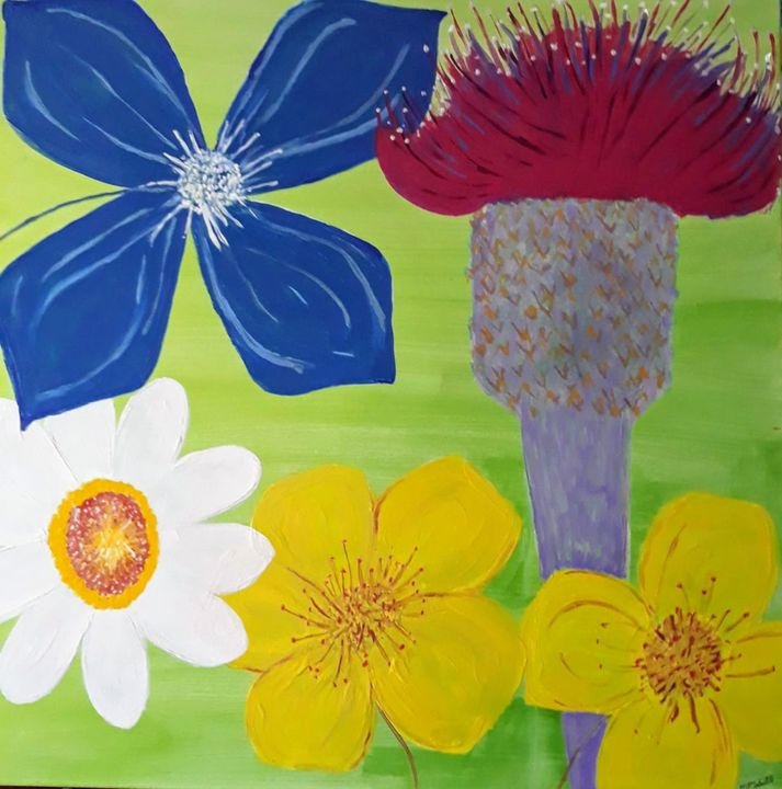 Wild flowers of the Burren, - Artbypetrina