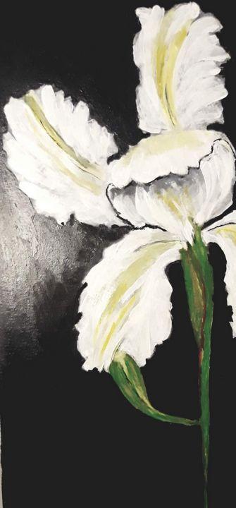 white iris - Artbypetrina