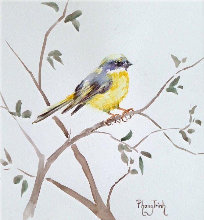 EASTERN YELLOW ROBIN - Phong Trinh Watercolor