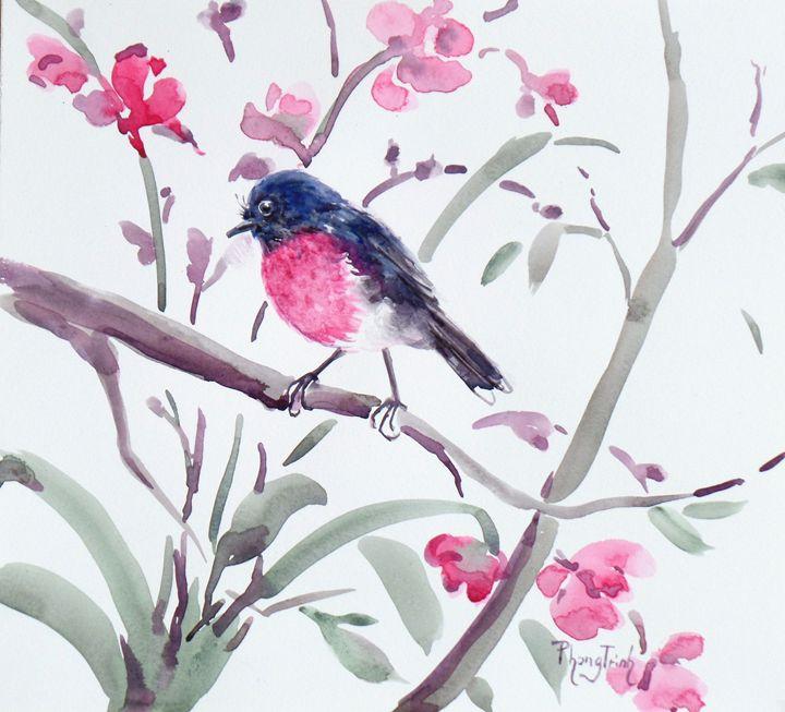 PINK ROBIN - Phong Trinh Watercolor