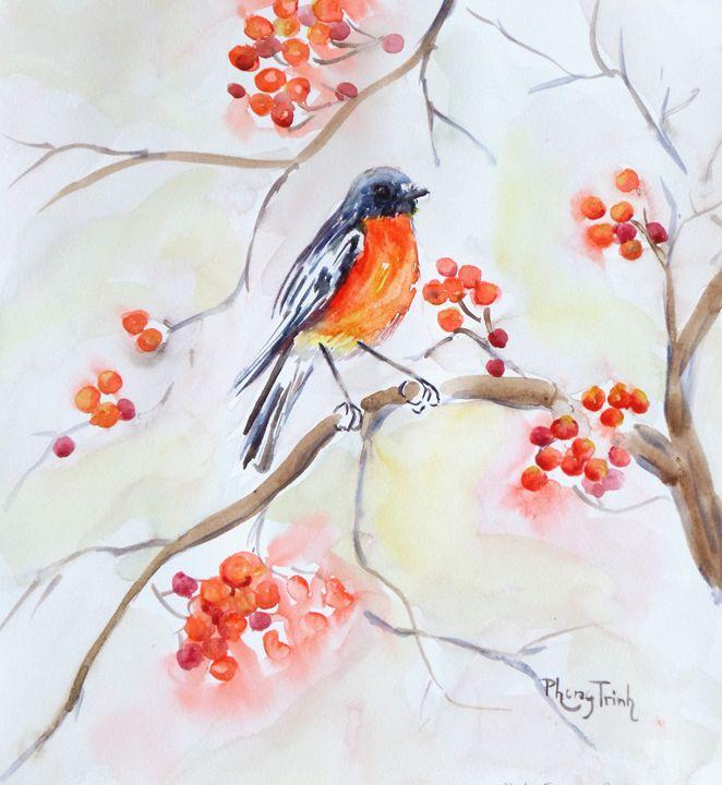 FLAME ROBIN - Phong Trinh Watercolor