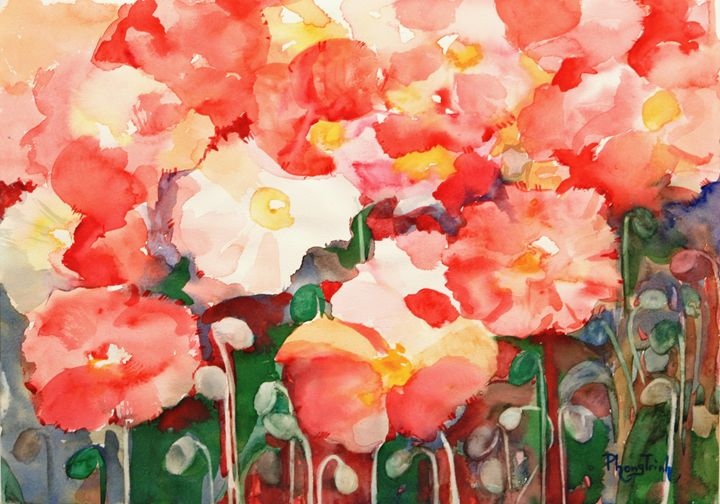 Poppy Fever - Phong Trinh Watercolor