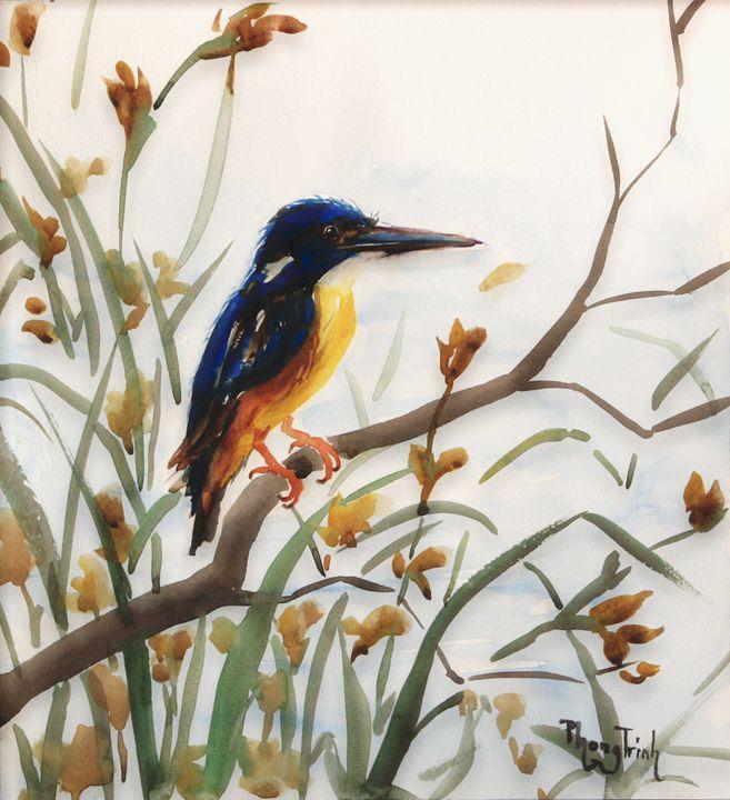 King Fisher - Phong Trinh Watercolor