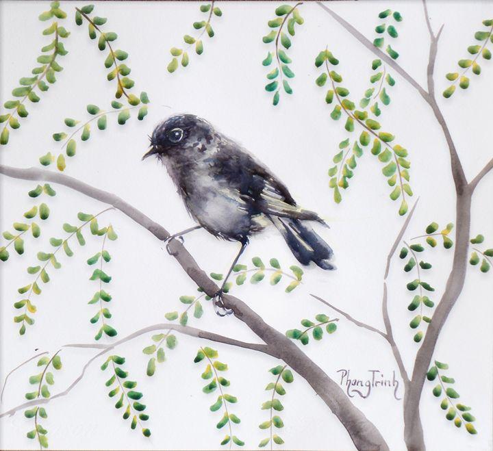 NZ BLACK ROBIN - Phong Trinh Watercolor