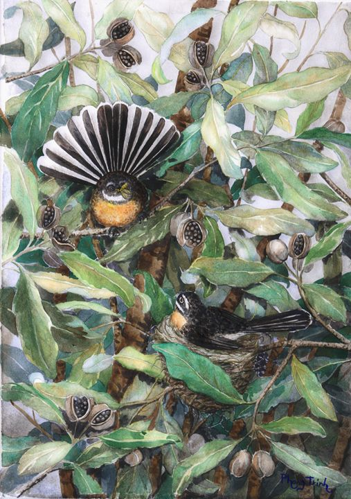 NZ Fantails - Phong Trinh Watercolor