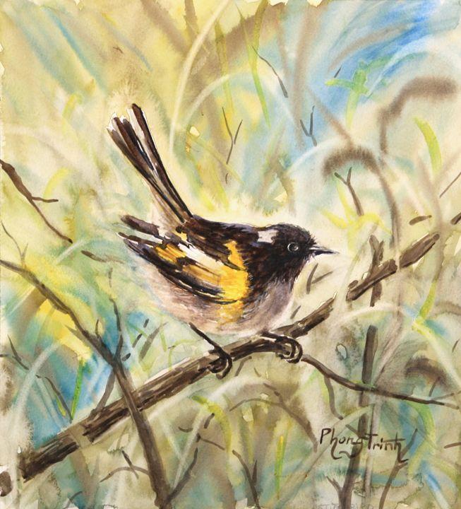 STITCHBIRD - Phong Trinh Watercolor