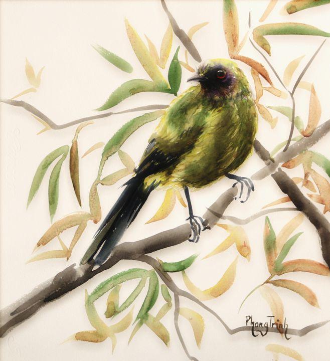Bellbird - Phong Trinh Watercolor