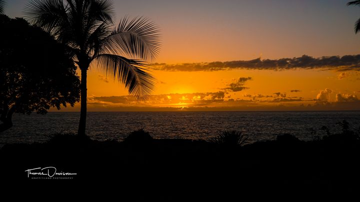 Hawaii Silhouette - Davison Photography LLC