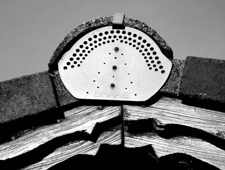 Roof Ridge, Bavaria. - DANIEL RAVEL PHOTOGRAPHY