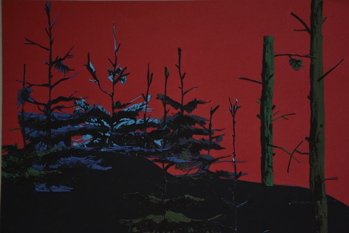 The woods - Weronika Kozak