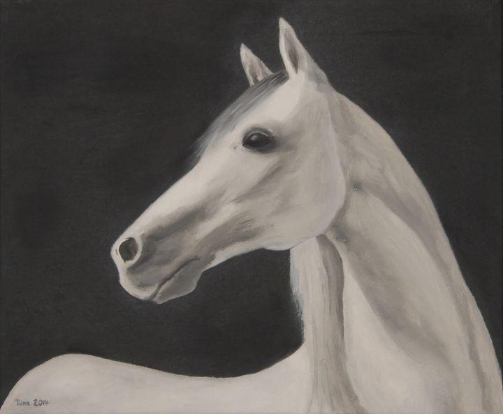 Arabian horse - Tiina Tanila