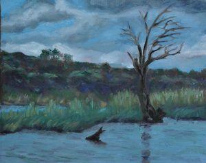 Botswana Chobe River II