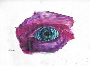 Eye of Vision