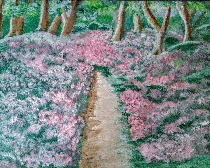 A Field of Pink - The Shaky Artist