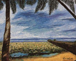 帛琉之景 THE SCENE OF PALAU