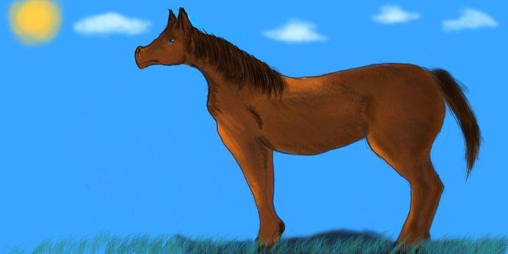 Horse - Super-PenciL