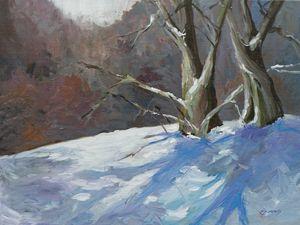 Winter Wild Wood