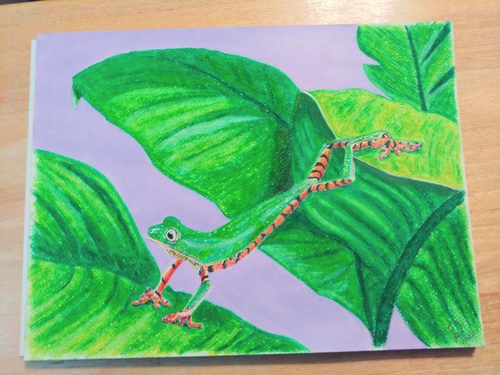 Splendid Leaf Tree Frog - Pat's Art  Corner