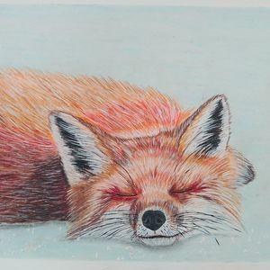Trixie Fox