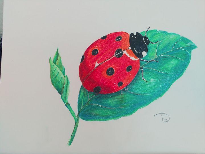 Lady bug - Pat's Art  Corner