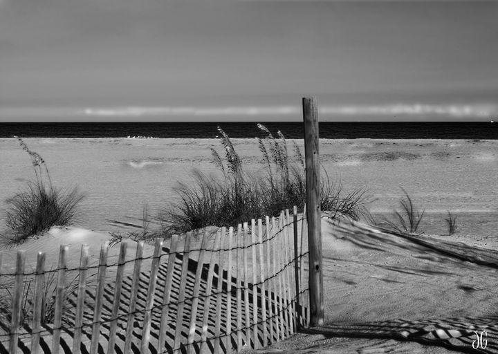Snow Fence - Tybee Island GA - Gypsy Light Photography