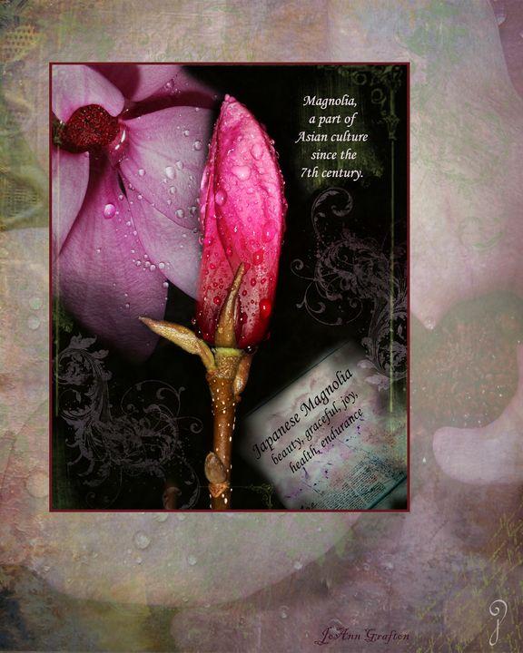 Graceful Japanese Magnolia - Gypsy Jos Art