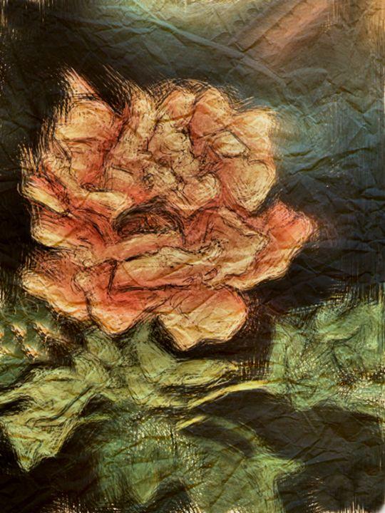 Asian Chrysanthemum I - Prints by Michel