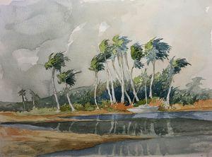 Caribbean Palms - Rob Carey Art