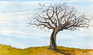 Tree on a Hilltop - Rob Carey Art