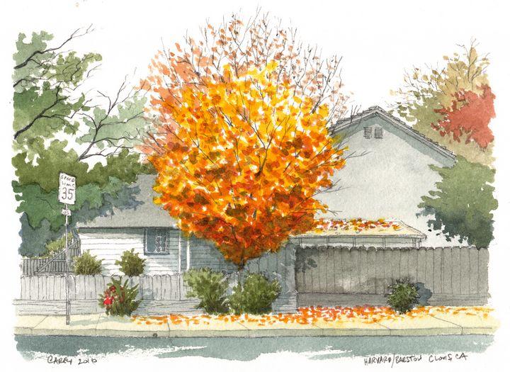 Autumn Color - Rob Carey Art